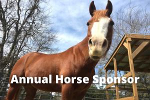 Annual Horse Sponsor